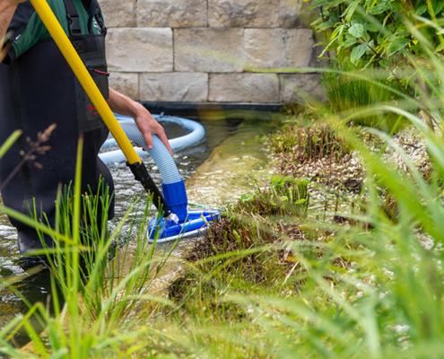 Lukas Kümmel – Garten- & Landschaftspflege: Bei der Teichreinigung werden Steine von Algenbefall befreit